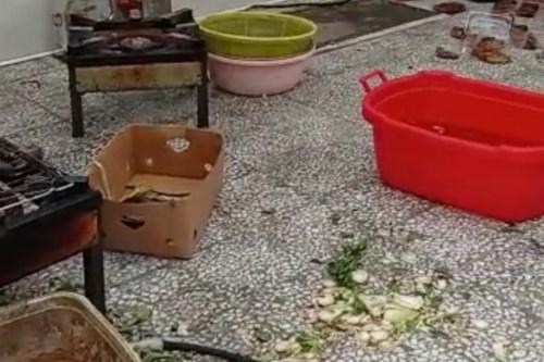 کارشناس-بهداشت-محیط-مرکز-بهداشت-جنوب-تهران-کارگاه-غیرمجاز-سرخ-کردن-سبزی-و-بادمجان-را-تعطیل-کرد